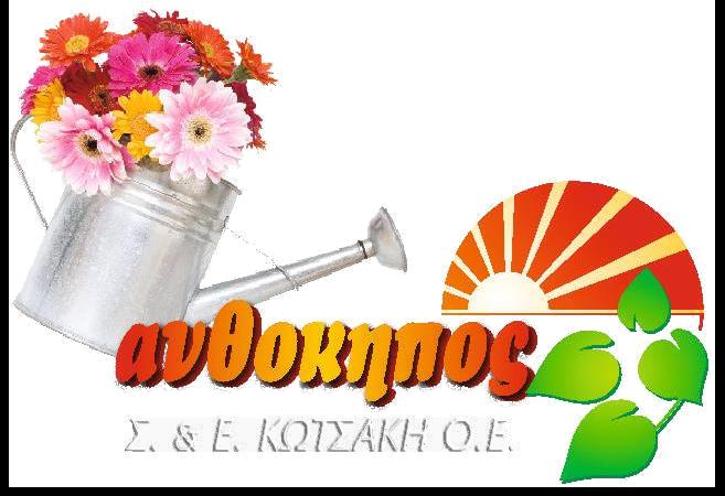 kotsaki logo